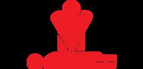 Gestes de secours Youpiii youpiii.fr premiers secours gestes d'urgence candidats permis B auto-écoles épreuve pratique examinateur questions orales diplôme vérification technique intérieur extérieur véhicule réponse
